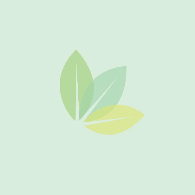 UV-stabilisiertes, umweltverträgliches Polypropylen